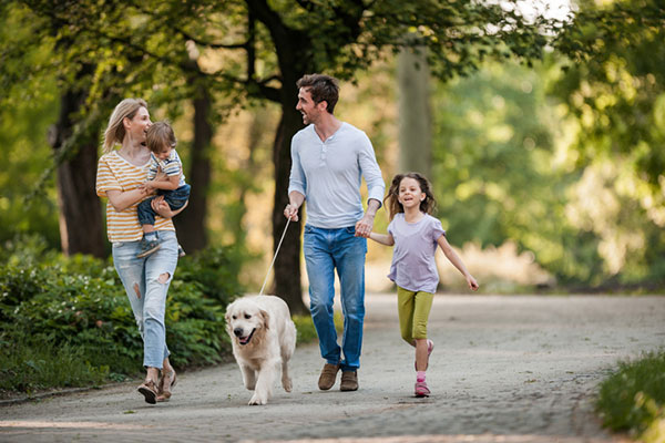 Family with two kids takes walk with dog