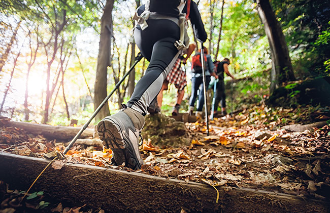 group hikes up trail with hiking sticks