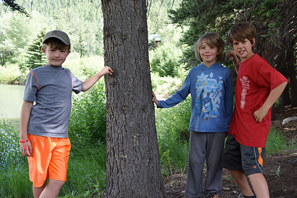ymca-camp-boys-trees
