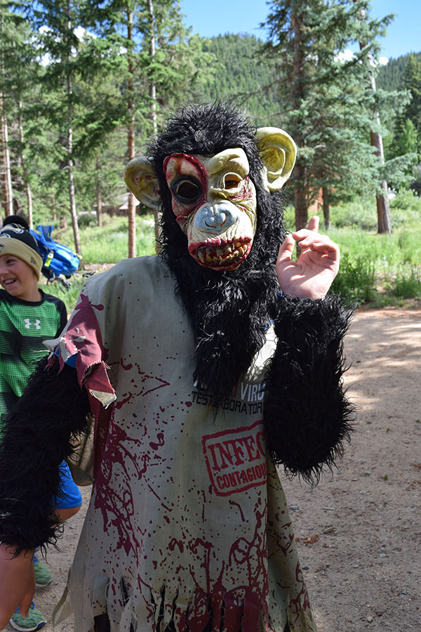 ymca-camp-monkey
