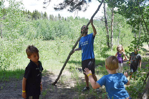 ymca-camp-tree